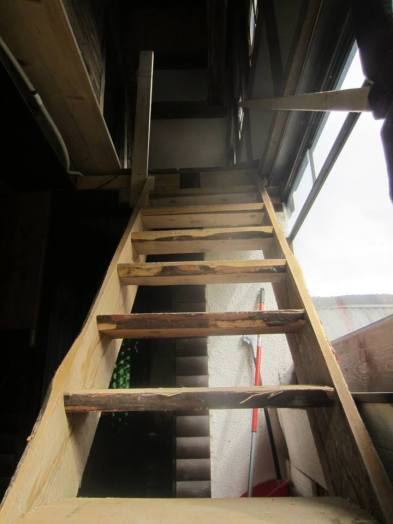 Rustic, rough cut stairs to the lounge and kitchen of Breg House