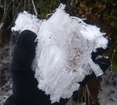A bizarre ice formation, that grows out of the soil