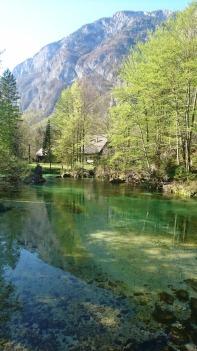 The Savica river in spring colours