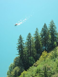 Bled Lake Blue from up on high