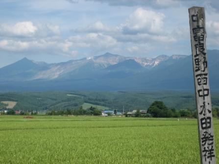 Rices paddies and mountains, Fukui, Japan